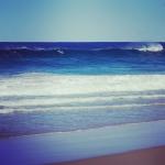 Surfing addict Dolphins?? More than 10 dolphins surfed for a few hours!! サーフィン中毒イルカちゃん? 10頭以上のイルカちゃん達が何時間も波乗りに夢中になってて可愛かったぁ〜 見にくいけど、左端に3頭。左寄り中央付近に2頭。右の白波付近に4〜5頭。後続の波待ちしてるイルカちゃんも数頭いて、見てて飽きない! @aloharuko