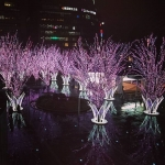 【Instagramより htm721さん/福岡・博多】 #Spring has come in #Hakatastation☆ #春到来!!! Now, #Hakatastation becomes #pink by #cherrytree #illumination.♡٩(❛∀❛)✧ˈ‧˚ #prettytrip #かわいい旅 Because I #love #pink, I'm very #happy.(*´艸`*)♡ #博多駅 の #さくらイルミネーション #とってもキレイ☆ #大好きなピンク だから #ハッピー な #予感(≧∇≦)キャー♪