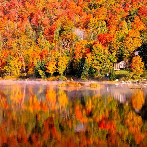 紅葉の季節のカナダメープル街道