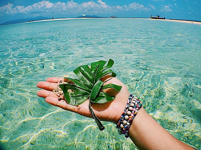 石垣島 浜島
