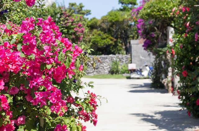 【白の絶景】沖縄県・竹富島