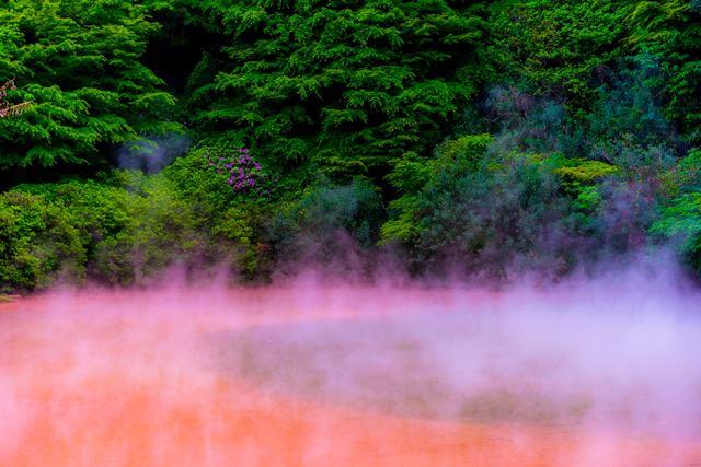 大分 別府温泉・血の池地獄