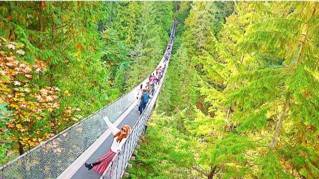 カナダ・バンクーバー キャピラノ吊り橋