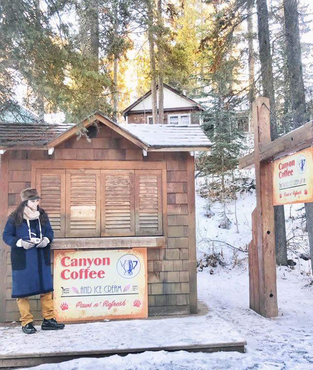 冬のカナディアンロッキー ジョンストンキャニオンアイスウォーク