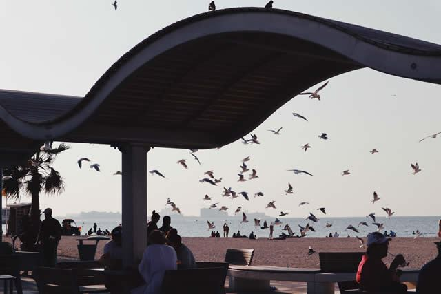 ドバイ Public Beach(パブリックビーチ)