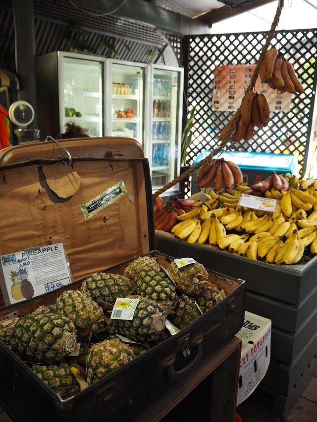 ゴールドコースト TROPICAL FRUIT WORLD