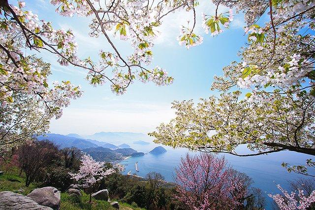 香川県三豊市 紫雲出山