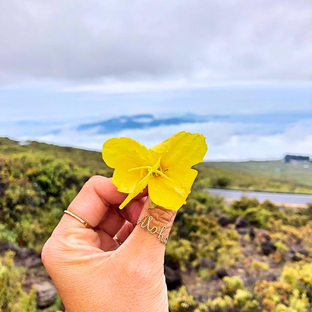 マウイ島 ハレアカラナショナルパーク