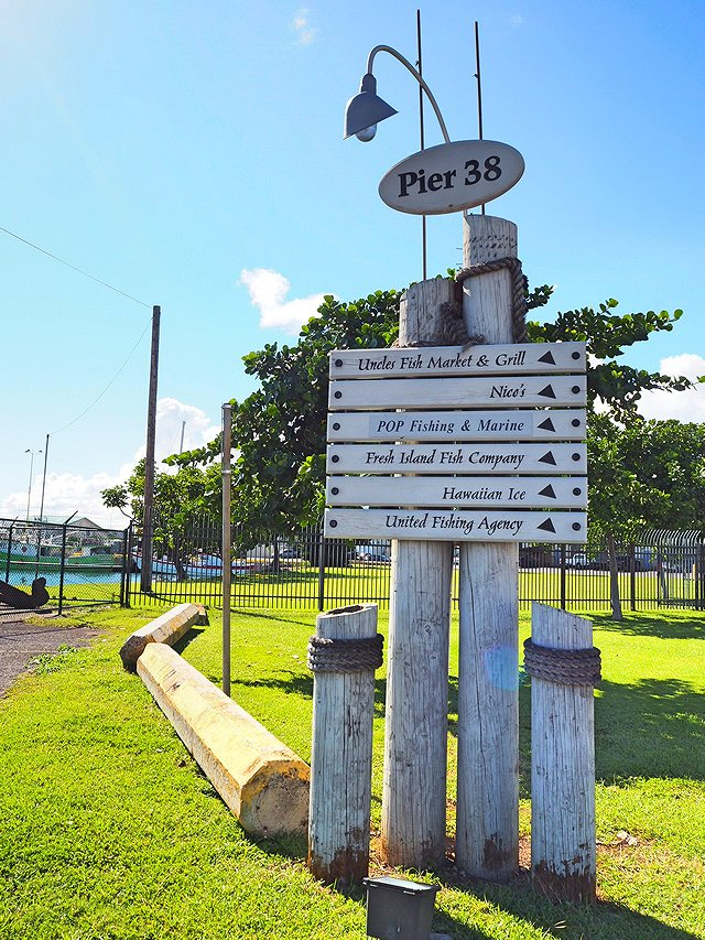 ハワイ ニコスピア38