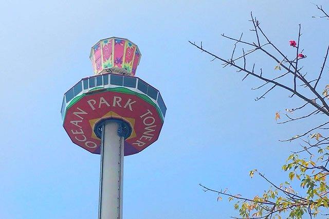 香港 Ocean Park(オーシャンパーク) Ocean Tower(オーシャンタワー)
