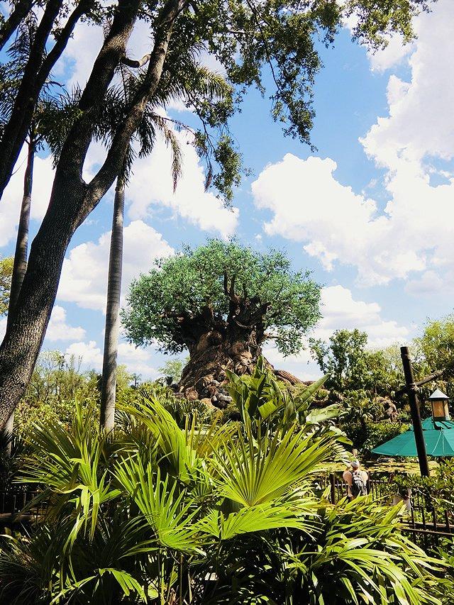フロリダ ウォルト・ディズニー・ワールド・リゾート アニマルキングダム