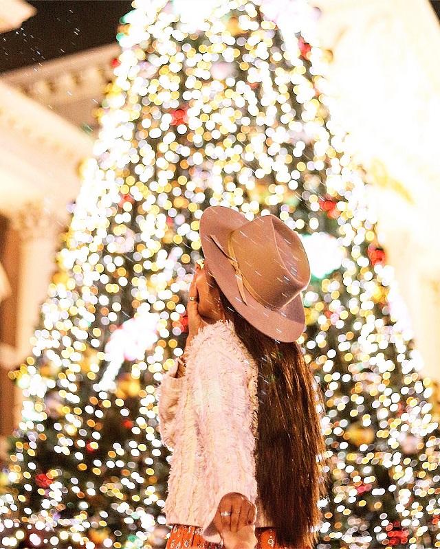 ハウステンボス 光のツリー