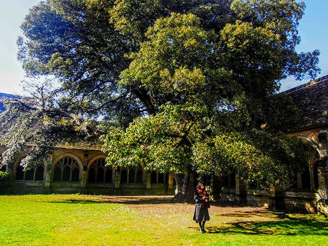 ニューカレッジの中庭