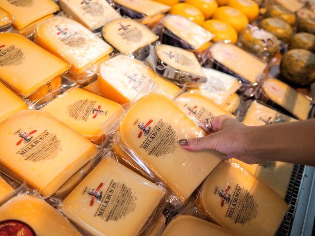 ゴータのチーズ市
